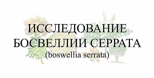 Исследование босвеллии серрата