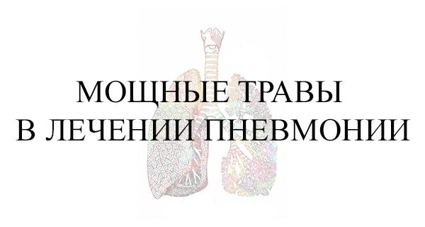 Мощные травы в лечении пневмонии
